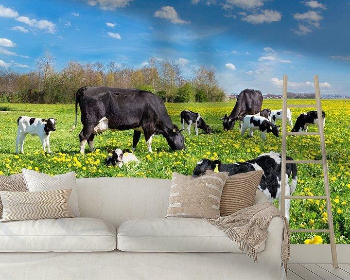 Beispiel fototapete: Herde von Kühen und Kälbern in europäischen Weide mit Löwenzahn von Ben Schonewille