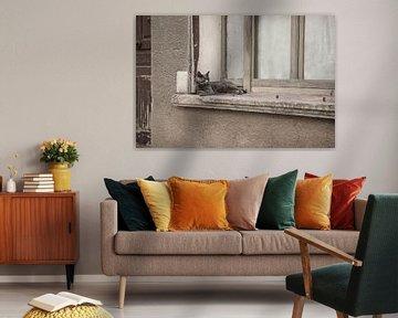Relax van Elles Rijsdijk