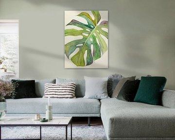 Der bunte Philodendron Monstera von Natalie Bruns