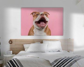Smile! von Elles Rijsdijk