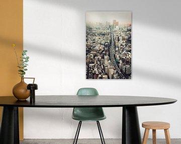 Von Roppongi nach Shibuya von Pascal Deckarm
