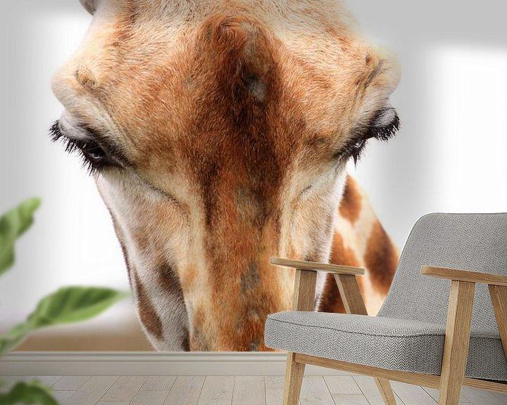 Sfeerimpressie behang: Gras etende giraf portret van Bobsphotography