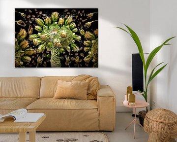 Brassica oleracea (Rosenkohl) von Olaf Bruhn