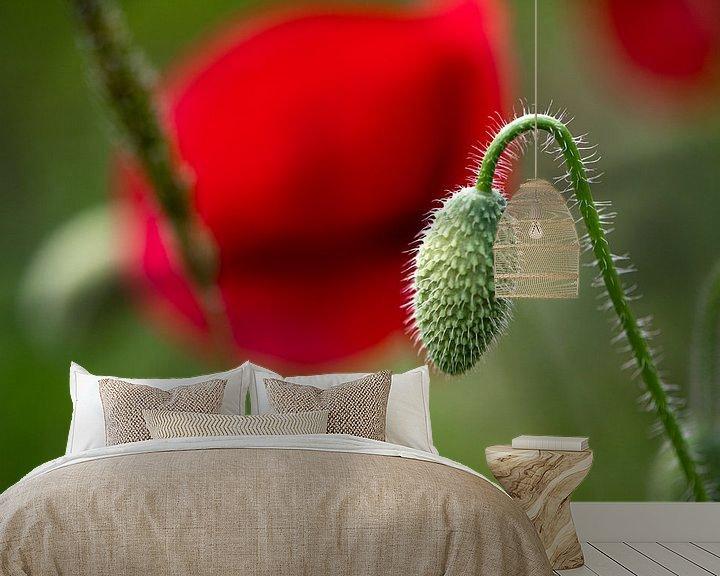 Beispiel fototapete: Die Geburt einer Mohnblume von Ingrid Aanen