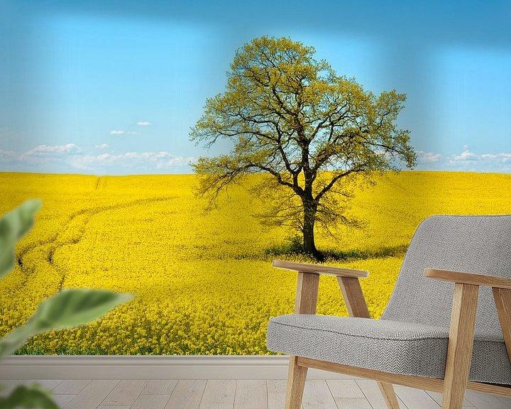 Beispiel fototapete: Leuchtend gelbe Landschaft von Joachim G. Pinkawa