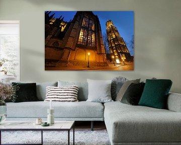 Domkerk en Domtoren in Utrecht (2) von Donker Utrecht