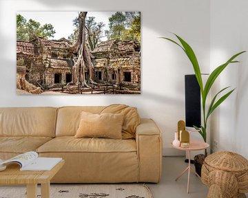 Cambodja | Angkor Ta Prohm | Ruine sur Mrs van Aalst
