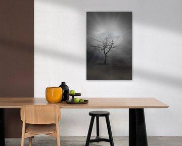 mystieke boom van eric brouwer