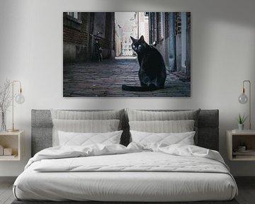 Posing schwarze Katze von Gerrit Veldman