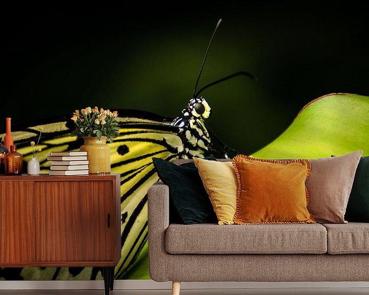 Sfeerimpressie behang: Vlinder op blad van René van der Horst