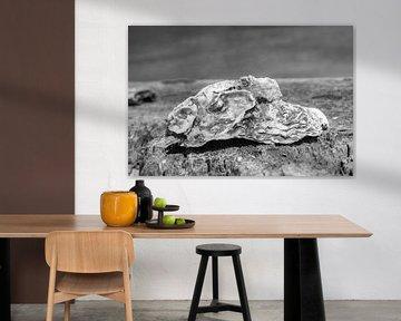oester von Arie Jan van Termeij