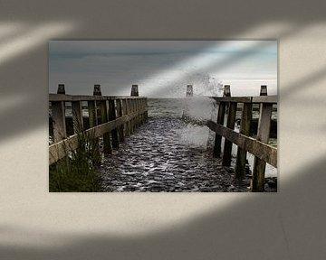 Zee dok van Anjo ten Kate