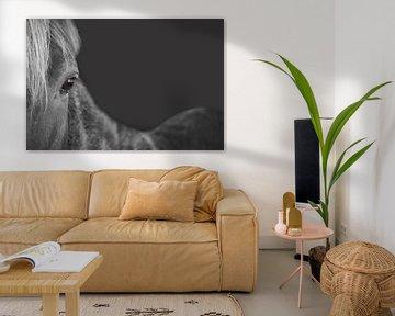 The gray horse sur Elianne van Turennout