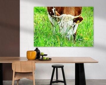 Landleben - Kühe, Kälber, Rinder von Jean-Louis Glineur alias DeVerviers