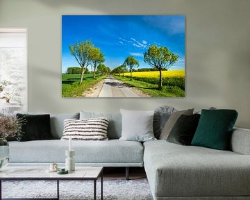 Road with trees on a canola field van Rico Ködder