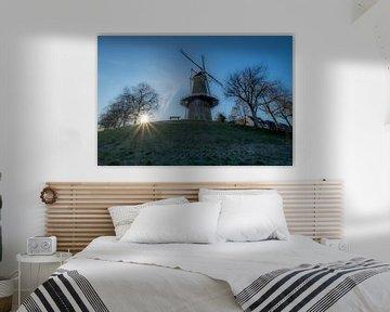 Molen Buren van Moetwil en van Dijk - Fotografie