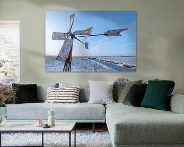 Windmolen in het weiland van Moetwil en van Dijk - Fotografie