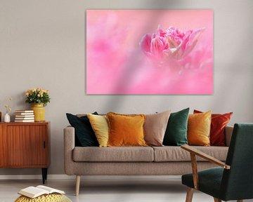 Pretty in Pink! von Karin de Bruin