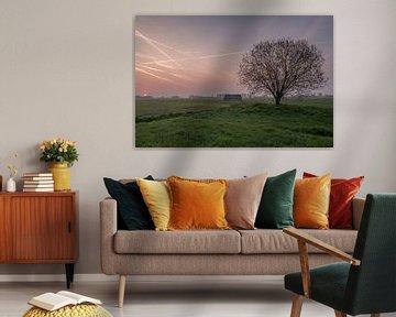 Weiland met boom en schuur bij zonsopkomst 04 van Moetwil en van Dijk - Fotografie