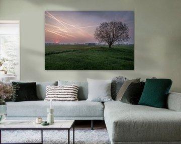 Weiland met boom en schuur bij zonsopkomst 05 van Moetwil en van Dijk - Fotografie