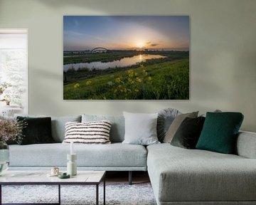 Skyline Culemborg van Moetwil en van Dijk - Fotografie