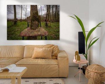 Verlassene Stühle in der Landschaft von Wesley Van Vijfeijken