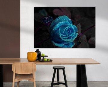 Blaue Rose in Tränen von Ellinor Creation