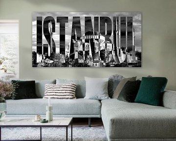 Istanbul Hagia-Sophia black white van Bass Artist