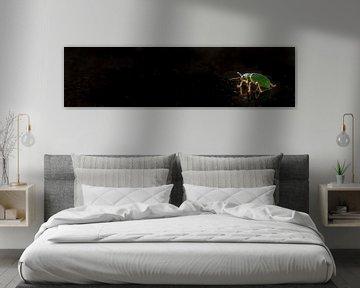 Kleines grünes Insekt von Aukelien Philips