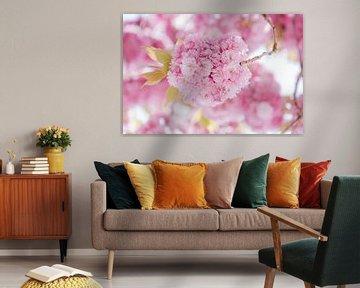 Roze bloemen wolk