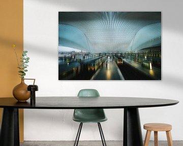 The dome von Bram Busink