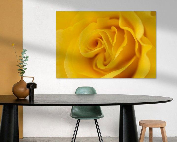 Sfeerimpressie: Gele roos van Marc Piersma