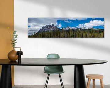 Panorama van Castle Mountain nabij Banff National Park, Canada van Rietje Bulthuis