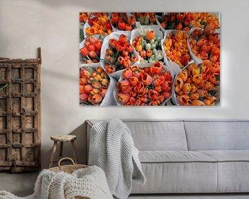 Oranje Tulpen