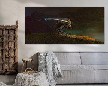 Vlucht van de Zwaluw van Stijn Windig
