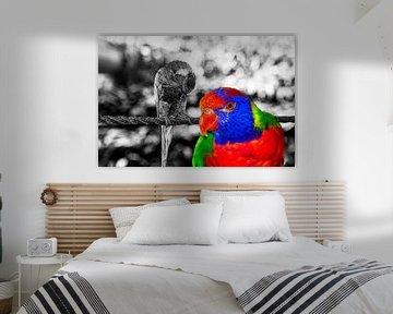 The bird of paradise van Michael Nägele