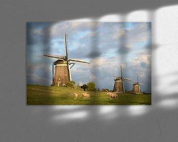Schafe und drei Windmühlen unter einem bewölkten Himmel von iPics Photography
