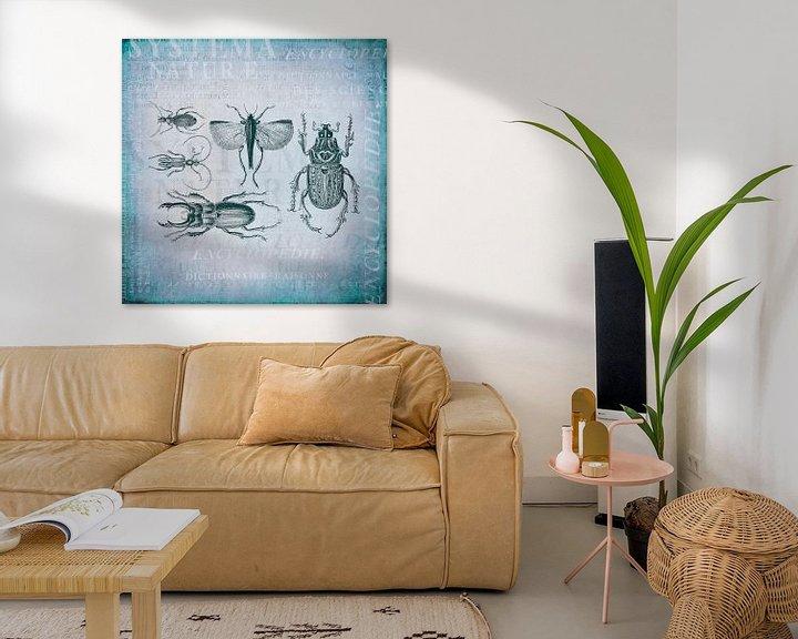 Sfeerimpressie: Kevers en insecten van Andrea Haase
