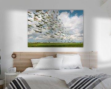 De Aalsmeerbaan van Wesley Heyne