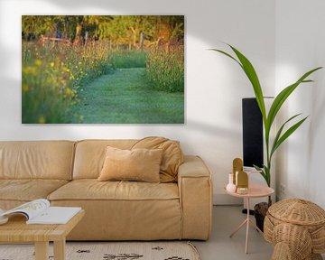Grasweg mit Blumen in der Abendsonne von Jeroen van Deel