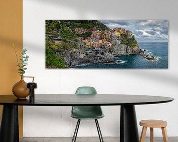 Kleurrijk Cinque Terre (Italië): Manarola van Martijn Mureau