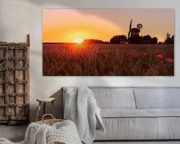Landleben Romantik alte Windmühle im Sonnenuntergang von Tanja Riedel
