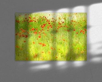 Klaprozen in de stijl van Monet van Birgitte Bergman