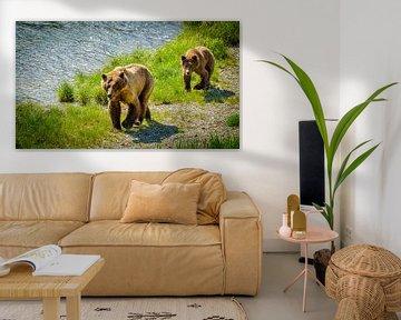 Grizzlybär mit einem Welpen, der entlang den Fluss, Alaska geht von Rietje Bulthuis