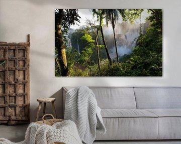 Iguazu waterfallen Argentina von Catherine Blancquaert