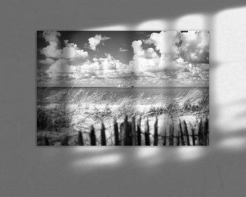 Zeeländische Dünen von Mariëlle Debrichy