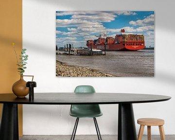 Hamburg - Containerschip bij Teufelsbrück van Sabine Wagner