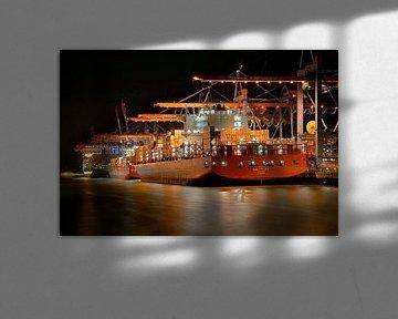 Containerschip bij Burchardkai pier van Sabine Wagner