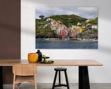 Manarola, Cinque Terre von Martijn Mureau