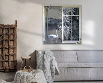 Fensterblick - Schwanensee von Christine Nöhmeier